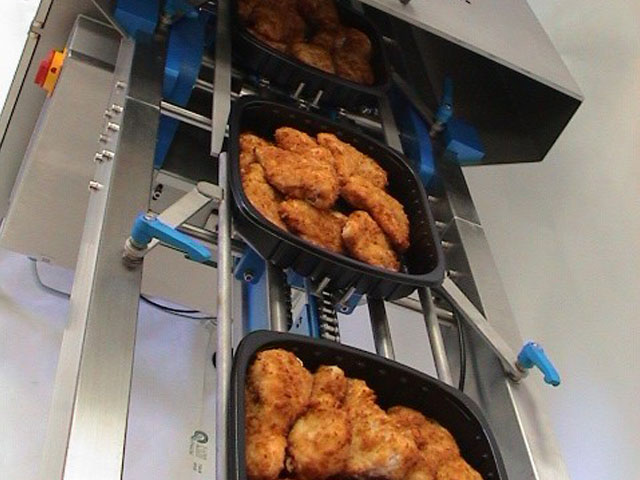 Chicken-on-traysealer-infeed